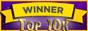 ZIBERLINE CONSULTING SRL - Locul 5 in Top 10k Floresti, clasa CAEN 6920